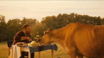 Święta krowa